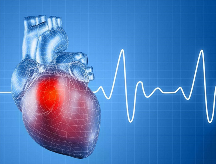 Nhịp tim ở mỗi đối tượng sẽ có sự khác biệt